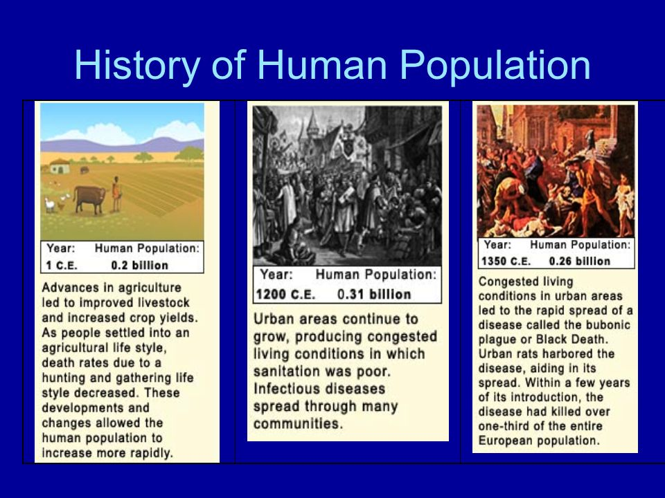 History of Human Population