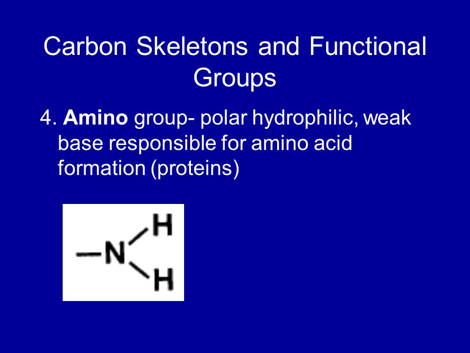 Carbon Skeletons and Functional Groups