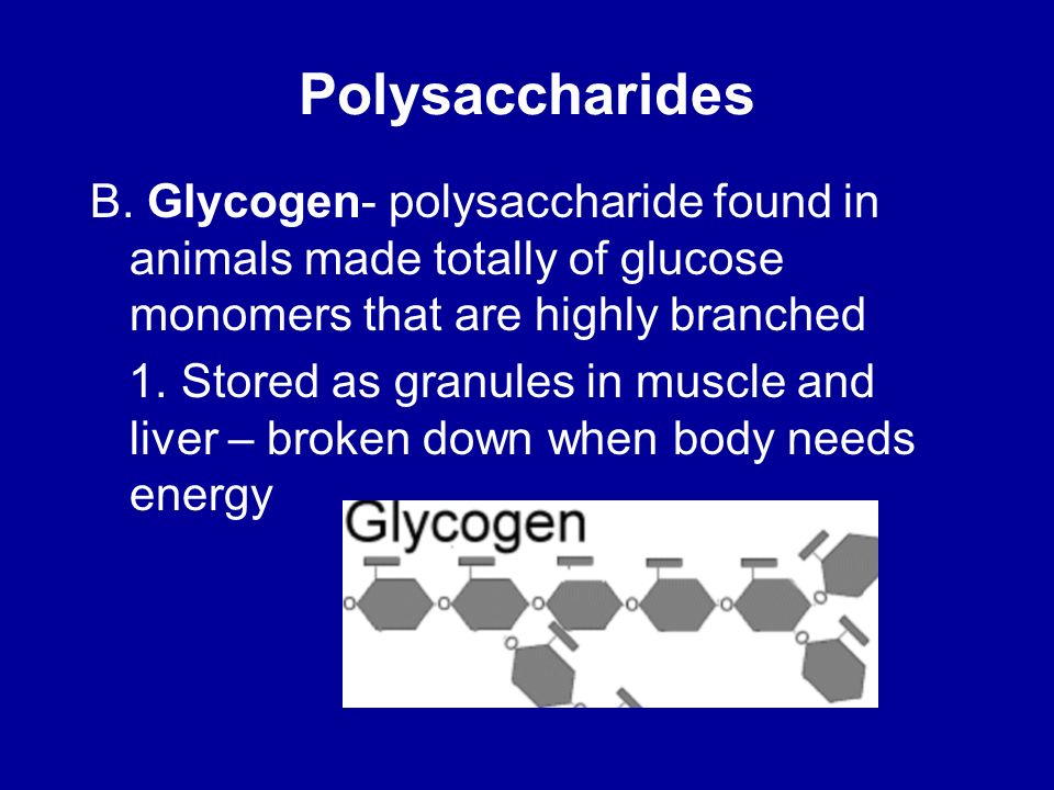 Polysaccharides B. Glycogen- polysaccharide found in animals made totally of glucose monomers that are highly branched.