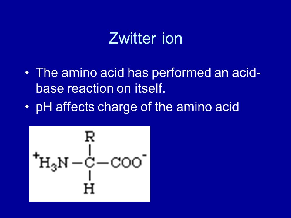 Zwitter ion The amino acid has performed an acid-base reaction on itself.