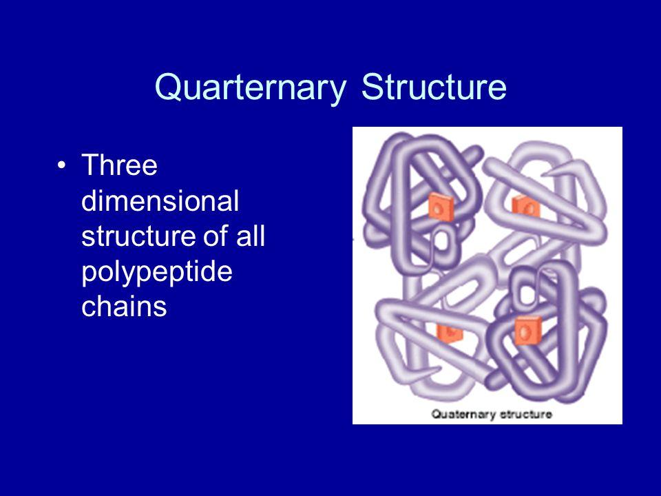Quarternary Structure