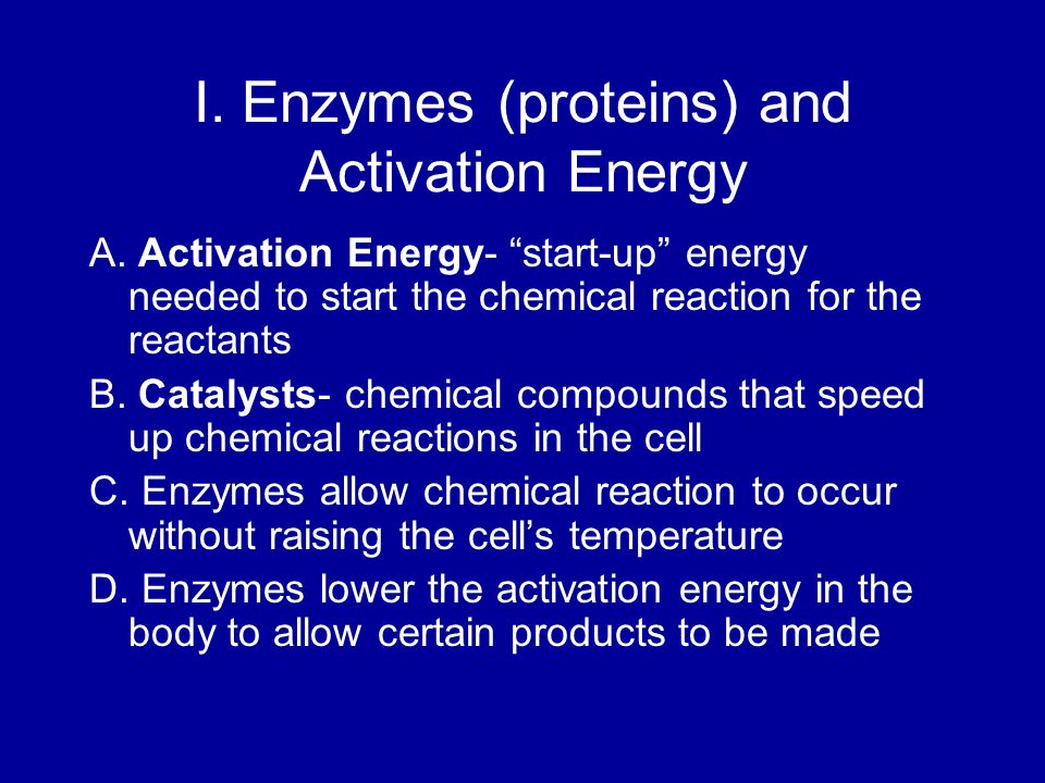 I. Enzymes (proteins) and Activation Energy