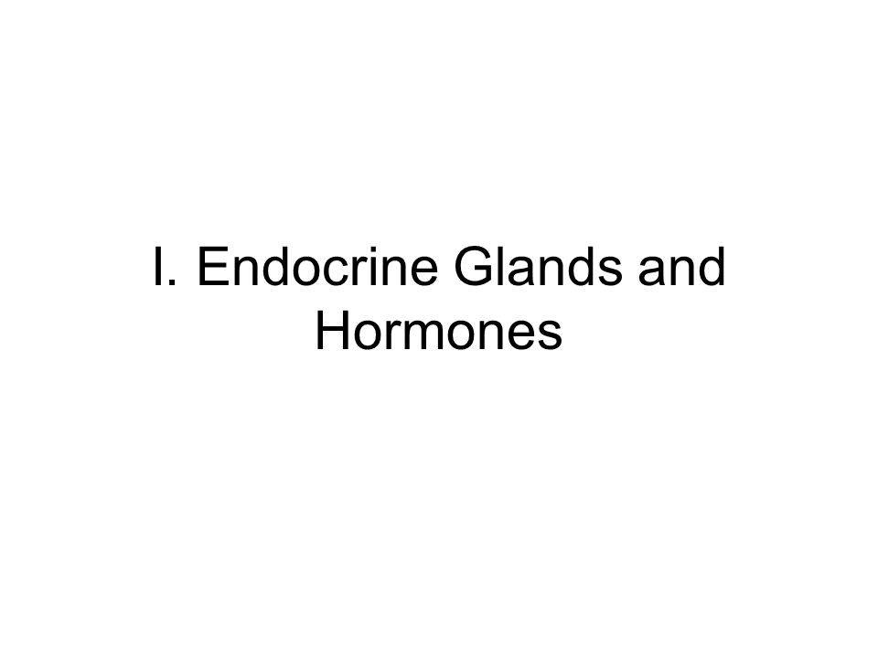 endocrine system glands and hormones pdf