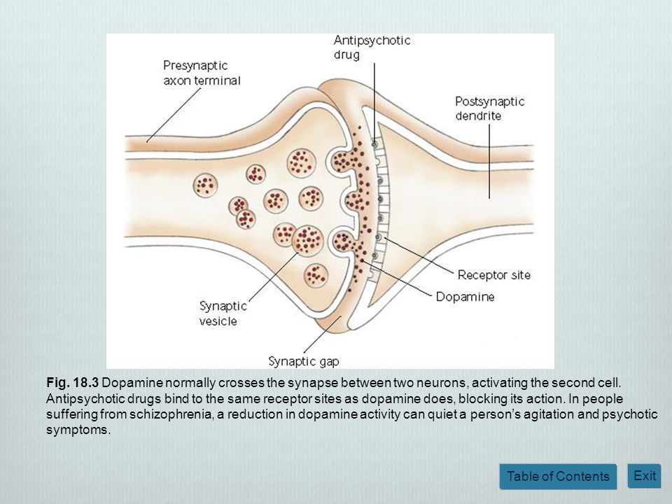 Fig. 18.3 Dopamine normally crosses the synapse between two neurons, activating the second cell.