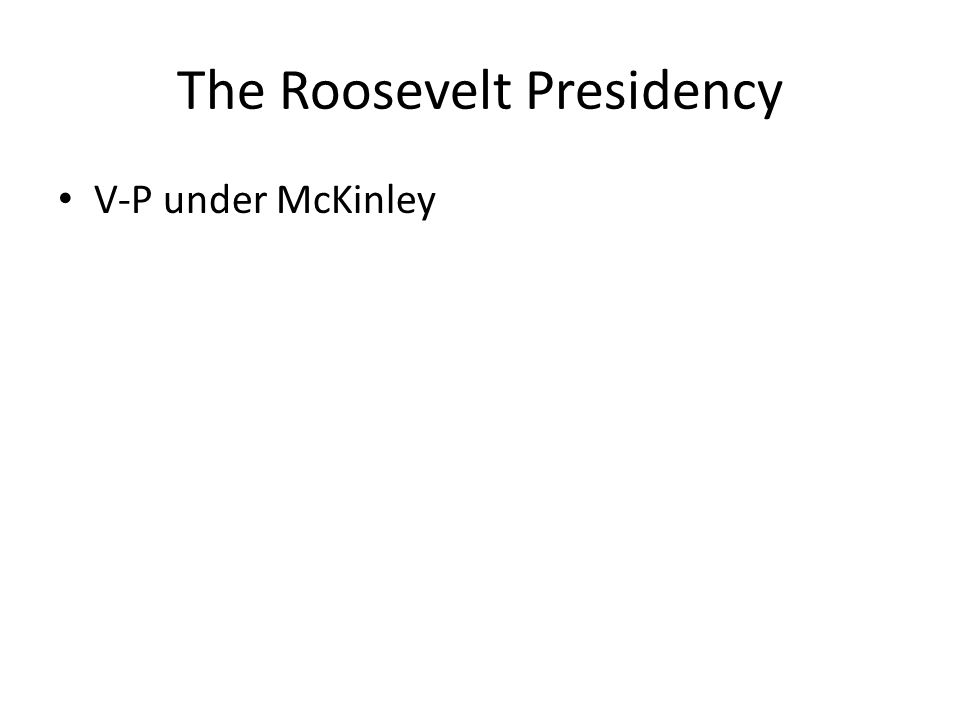 The Roosevelt Presidency