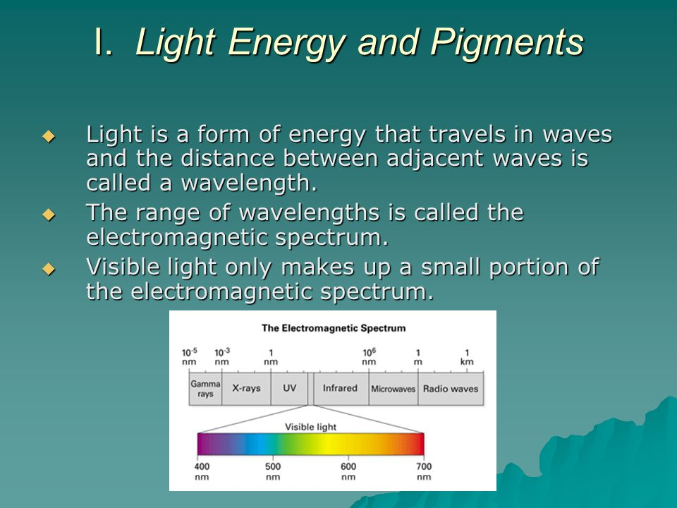 I. Light Energy and Pigments
