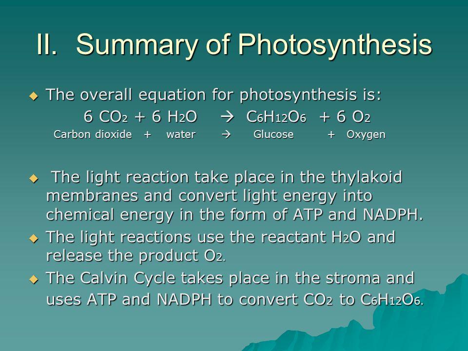 II. Summary of Photosynthesis