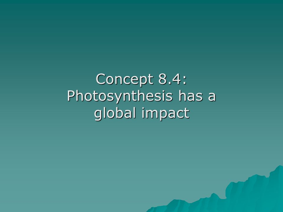 Concept 8.4: Photosynthesis has a global impact