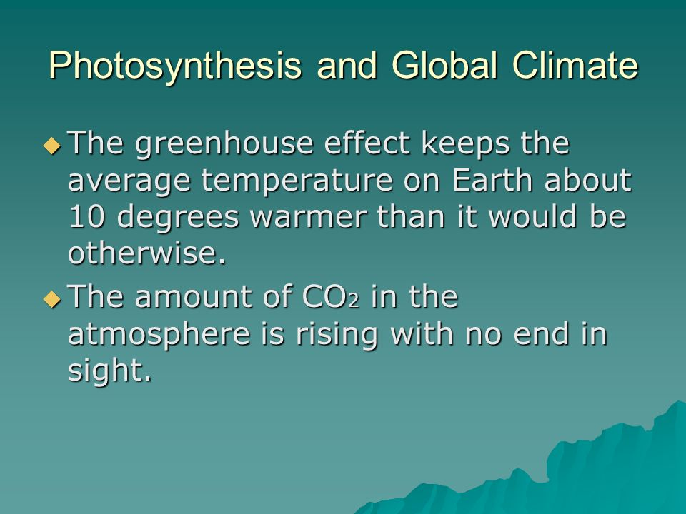 Photosynthesis and Global Climate