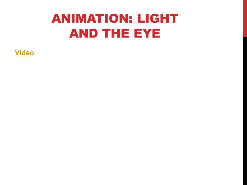 Animation: Light and the Eye