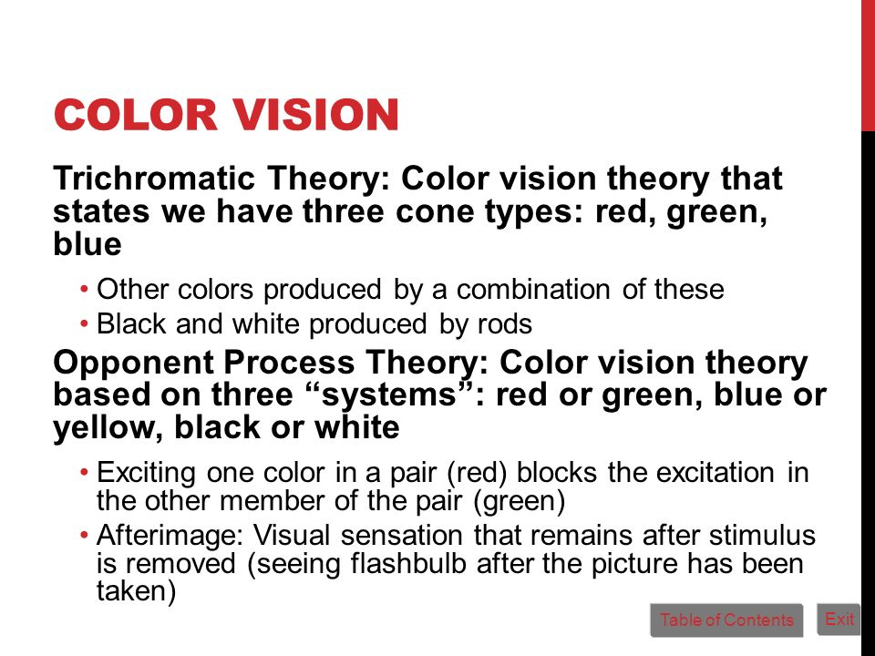 Color Vision Trichromatic Theory: Color vision theory that states we have three cone types: red, green, blue.