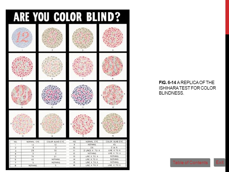 Fig. 6-14 A replica of the Ishihara test for color blindness.