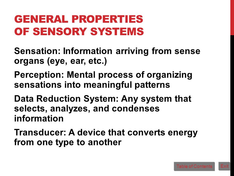 General Properties of Sensory Systems