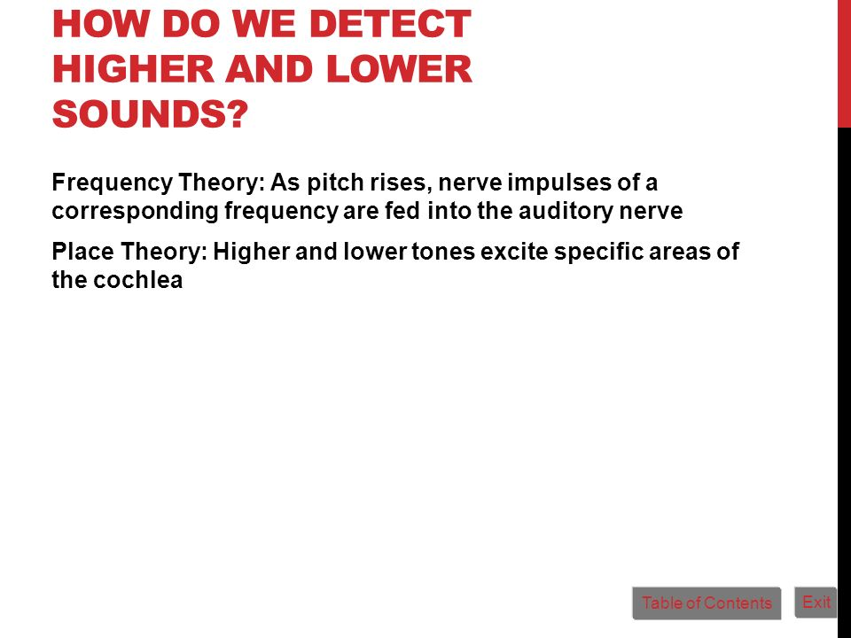 How Do We Detect Higher and Lower Sounds