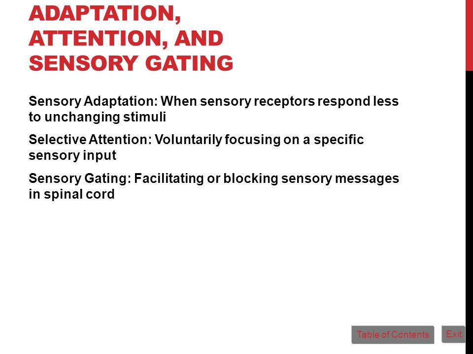 Adaptation, Attention, and Sensory Gating