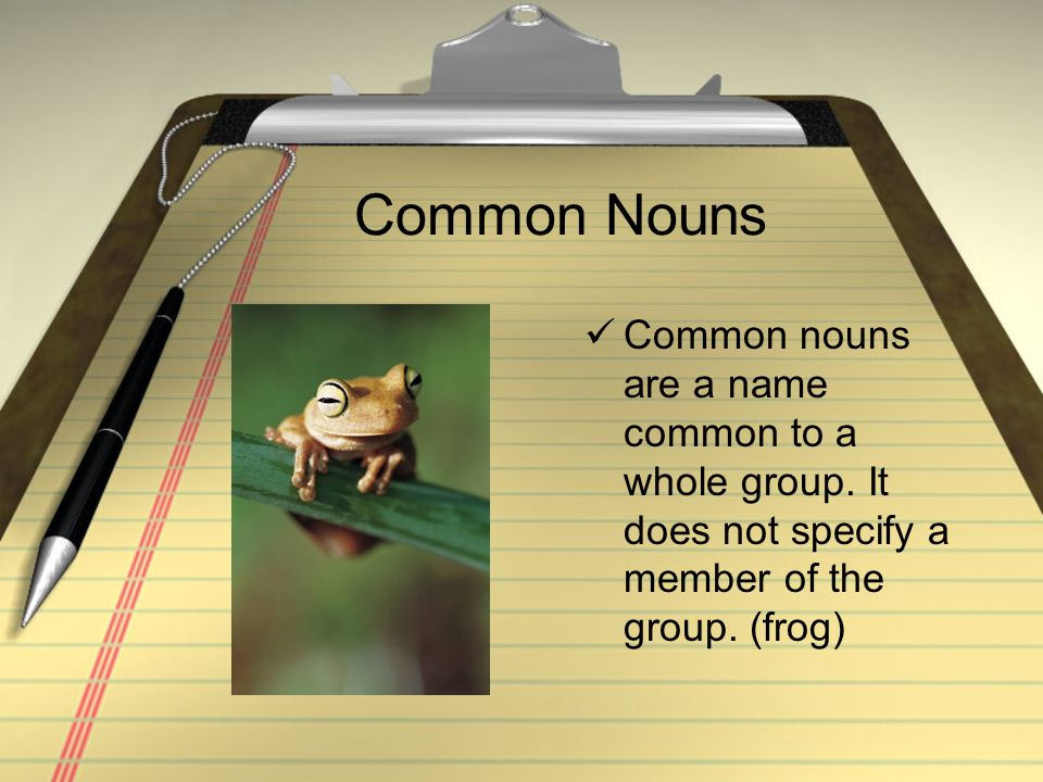Common Nouns Common nouns are a name common to a whole group.