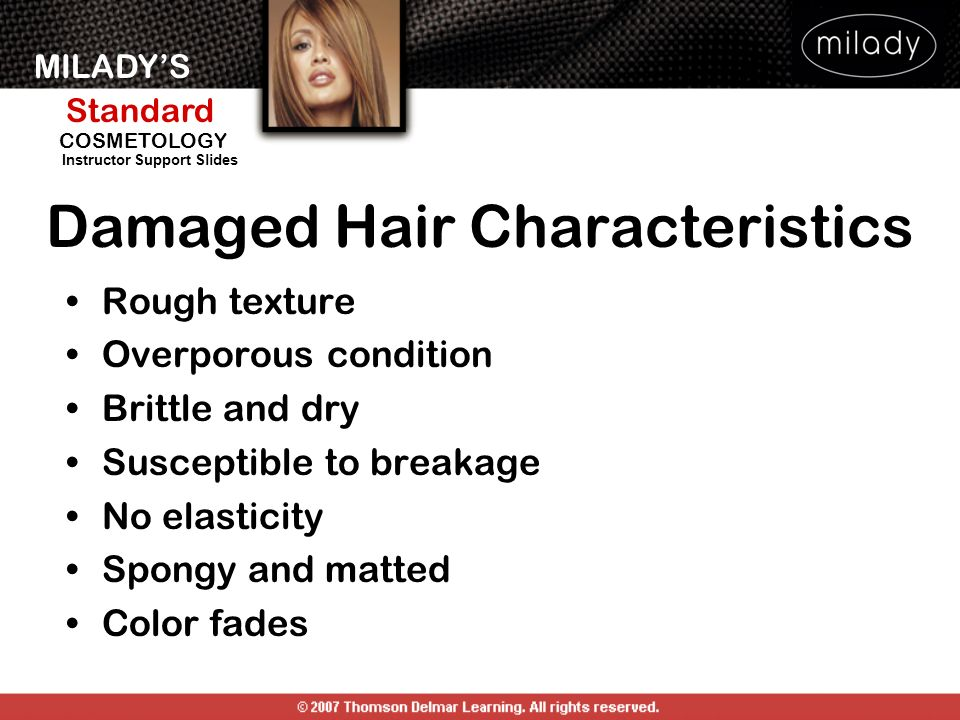 Damaged Hair Characteristics