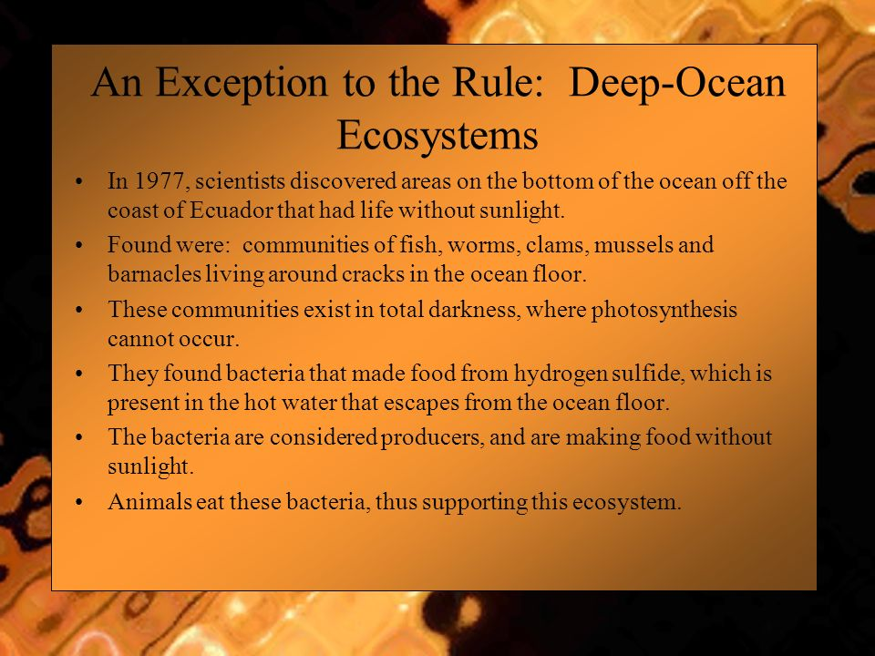 An Exception to the Rule: Deep-Ocean Ecosystems