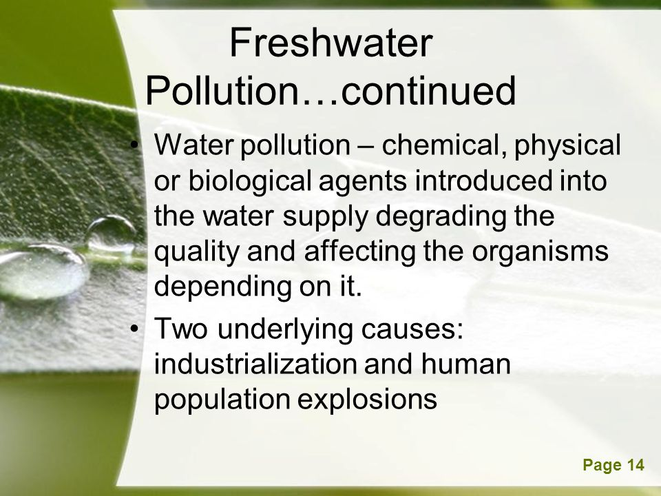 Freshwater Pollution…continued