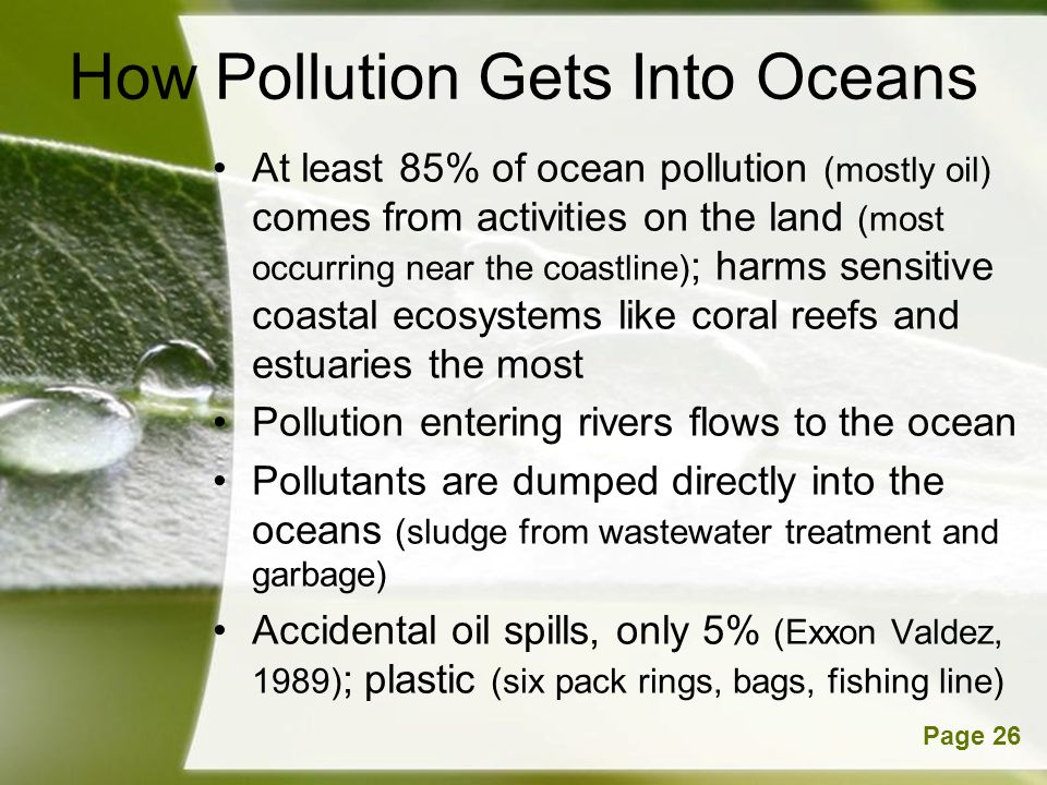 How Pollution Gets Into Oceans