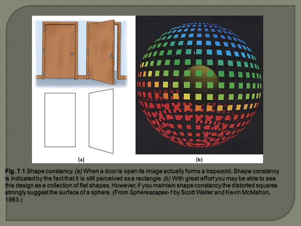 Fig. 7.1 Shape constancy. (a) When a door is open its image actually forms a trapezoid.