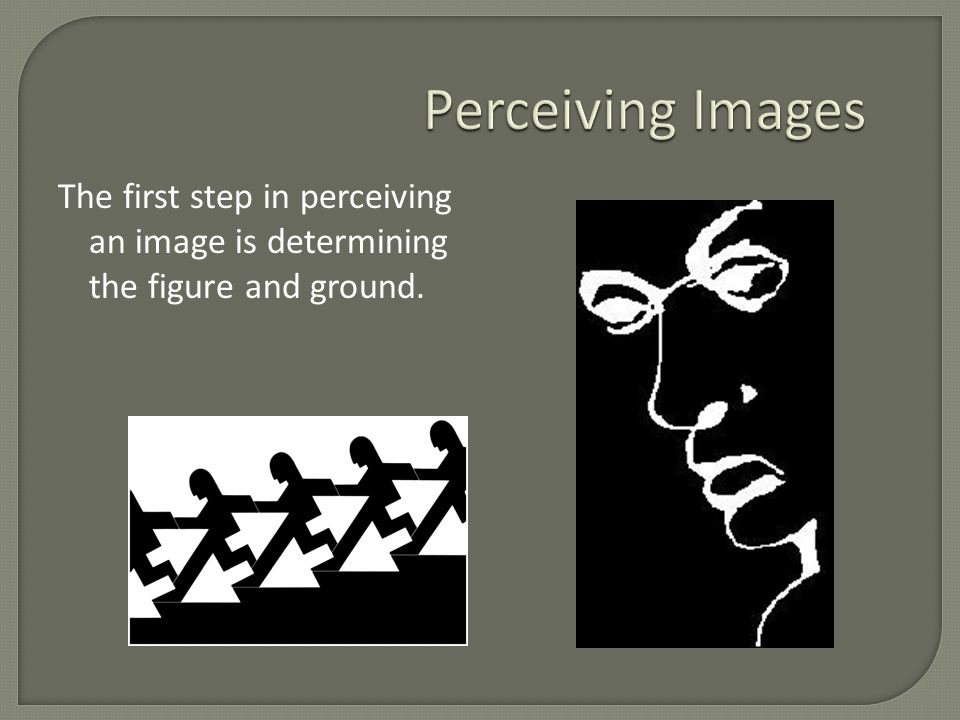 Perceiving Images The first step in perceiving an image is determining the figure and ground.