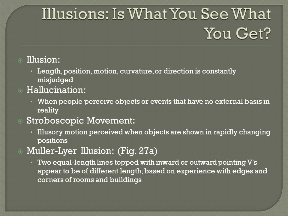 Illusions: Is What You See What You Get
