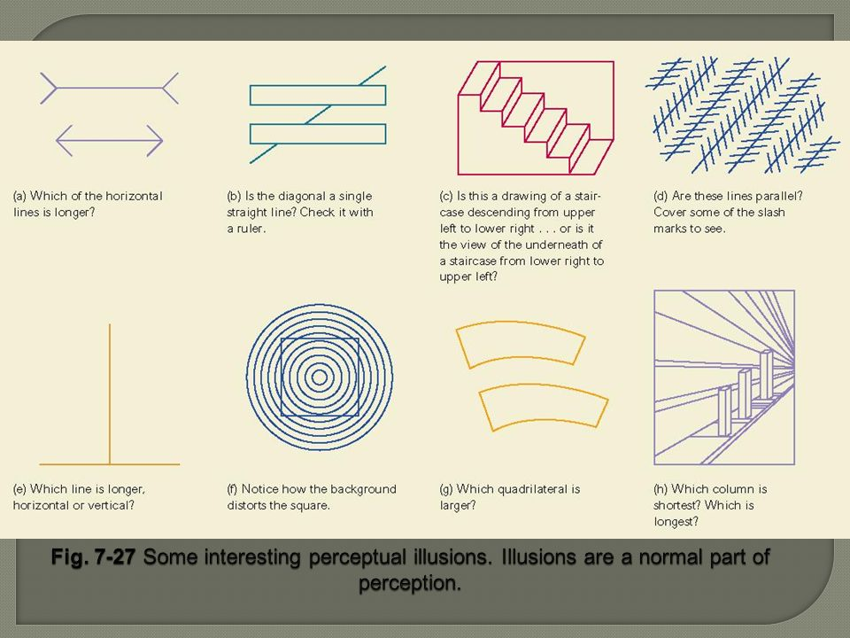 Fig. 7-27 Some interesting perceptual illusions