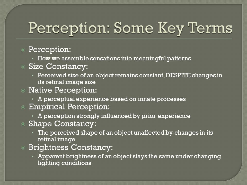 Perception: Some Key Terms