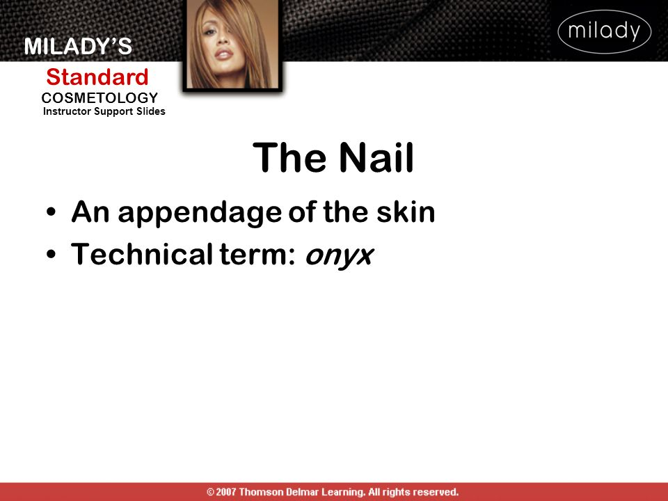 The Nail An appendage of the skin Technical term: onyx THE NAIL