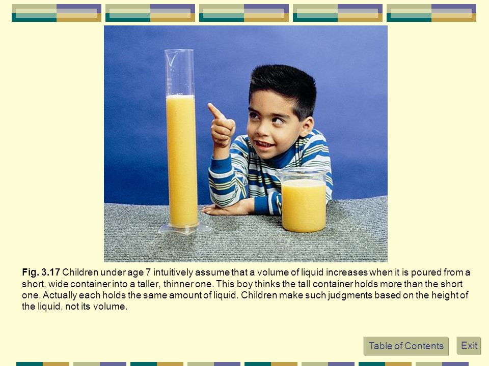 Fig. 3.17 Children under age 7 intuitively assume that a volume of liquid increases when it is poured from a short, wide container into a taller, thinner one. This boy thinks the tall container holds more than the short one. Actually each holds the same amount of liquid. Children make such judgments based on the height of the liquid, not its volume.