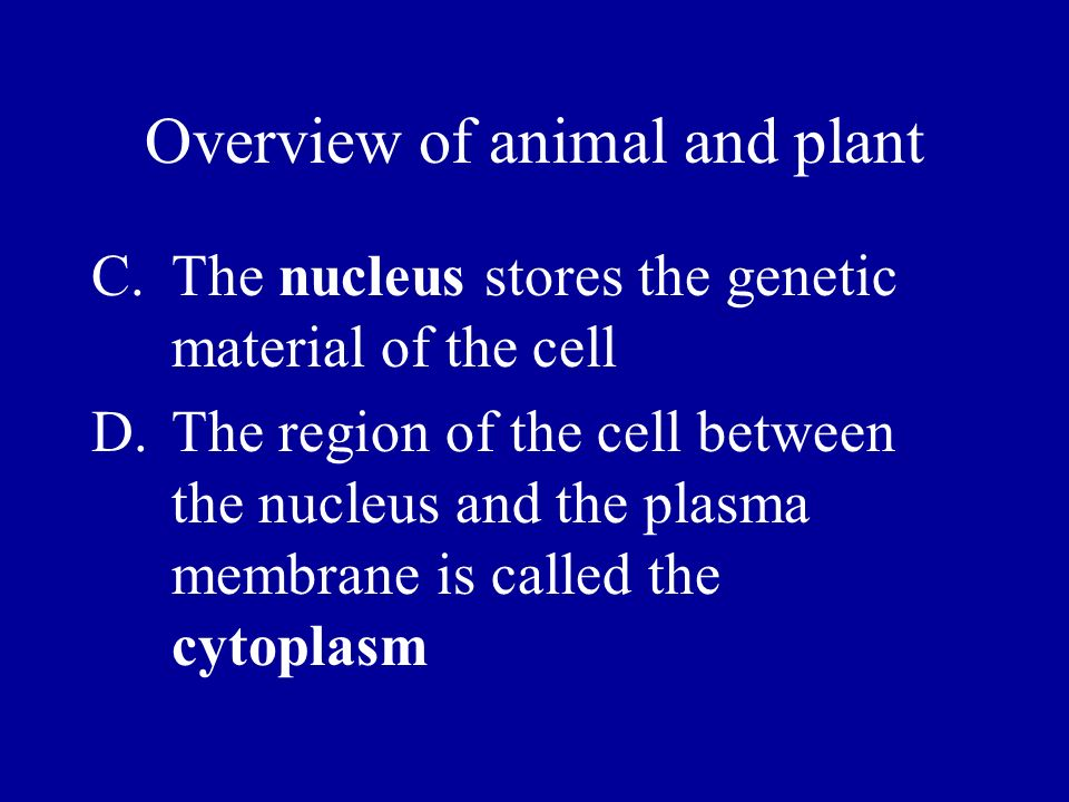 Overview of animal and plant