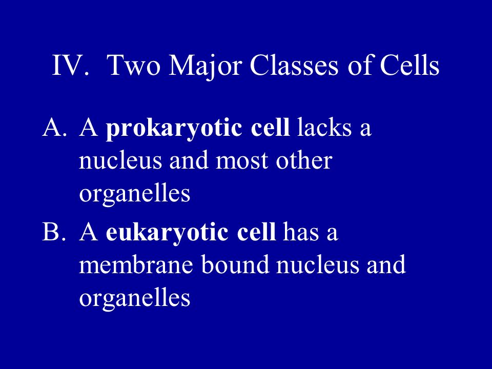 IV. Two Major Classes of Cells