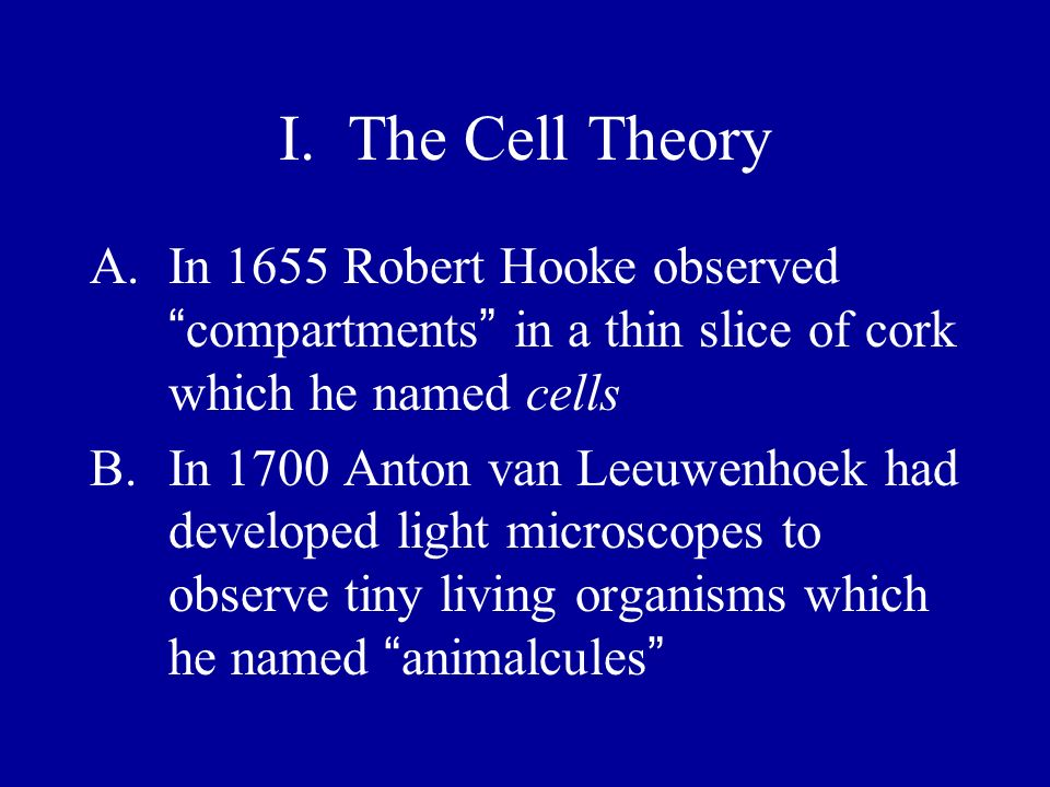 I. The Cell Theory In 1655 Robert Hooke observed compartments in a thin slice of cork which he named cells.