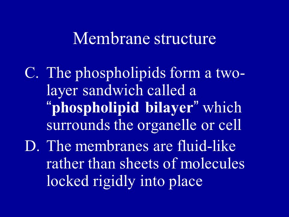 Membrane structure The phospholipids form a two-layer sandwich called a phospholipid bilayer which surrounds the organelle or cell.