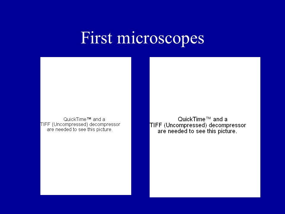 First microscopes