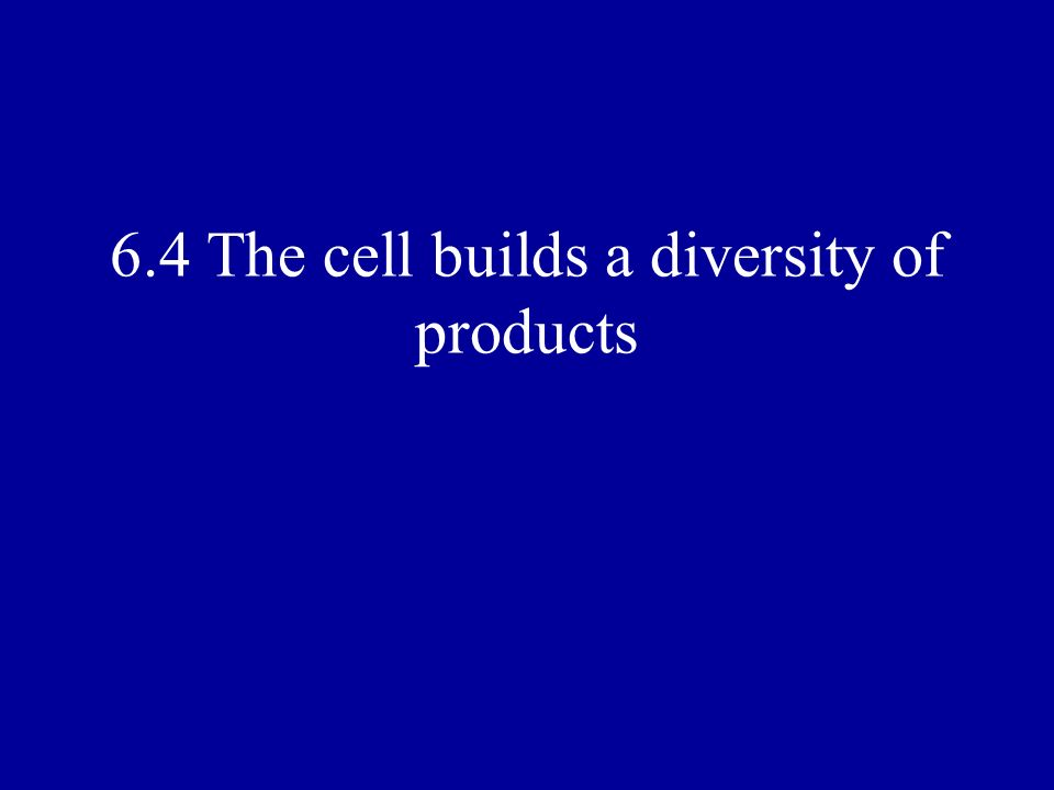 6.4 The cell builds a diversity of products