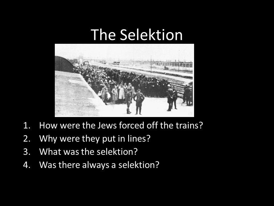 The Selektion How were the Jews forced off the trains