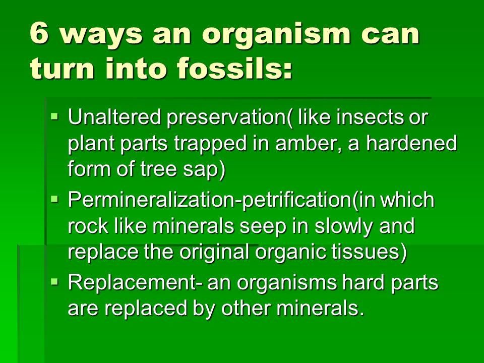 6 ways an organism can turn into fossils: