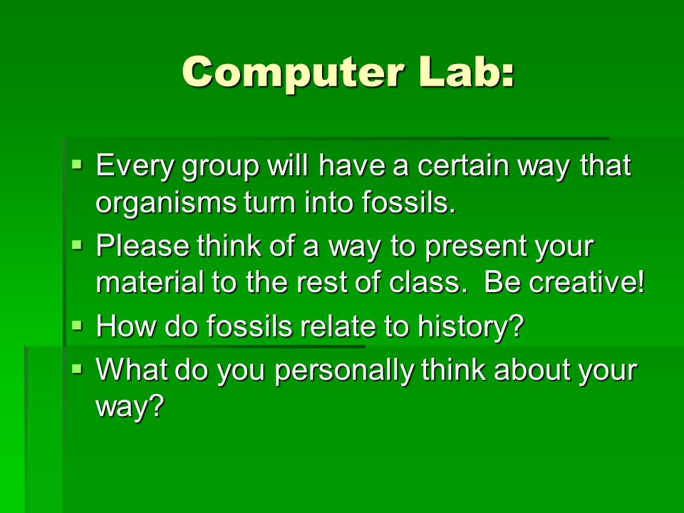 Computer Lab: Every group will have a certain way that organisms turn into fossils.