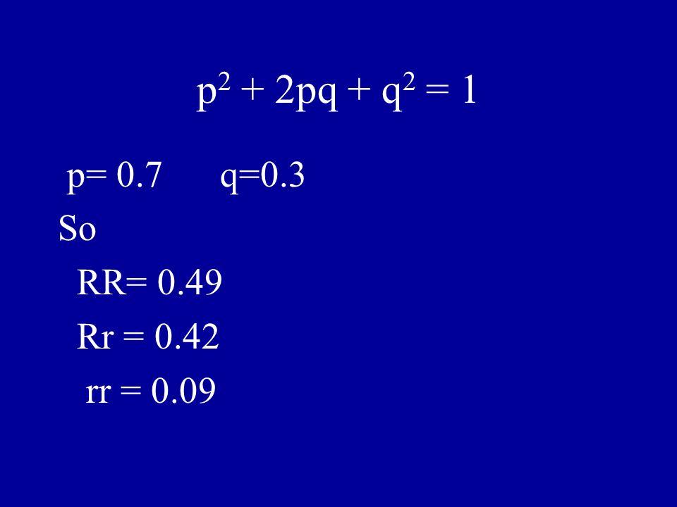 p2 + 2pq + q2 = 1 p= 0.7 q=0.3 So RR= 0.49 Rr = 0.42 rr = 0.09