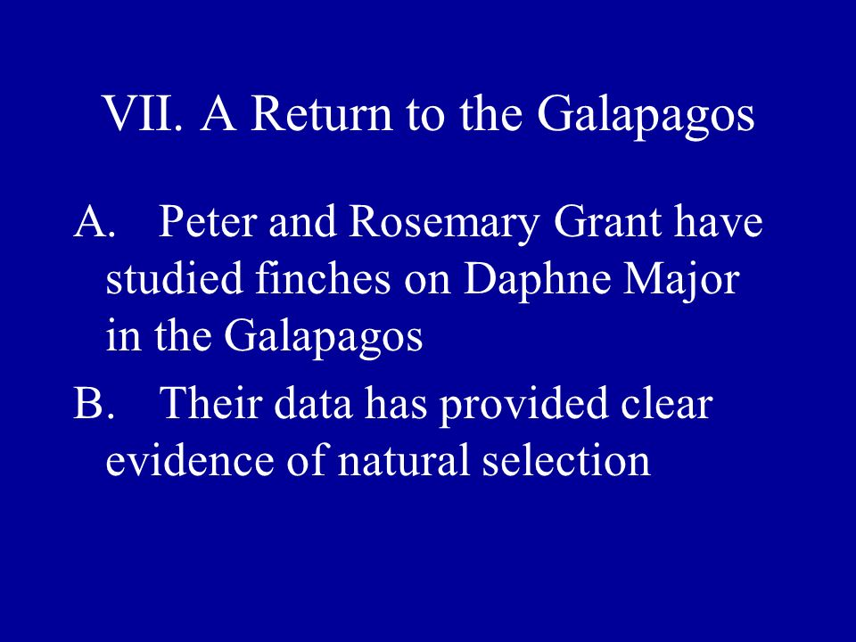 VII. A Return to the Galapagos