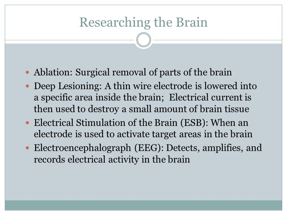 Researching the Brain Ablation: Surgical removal of parts of the brain