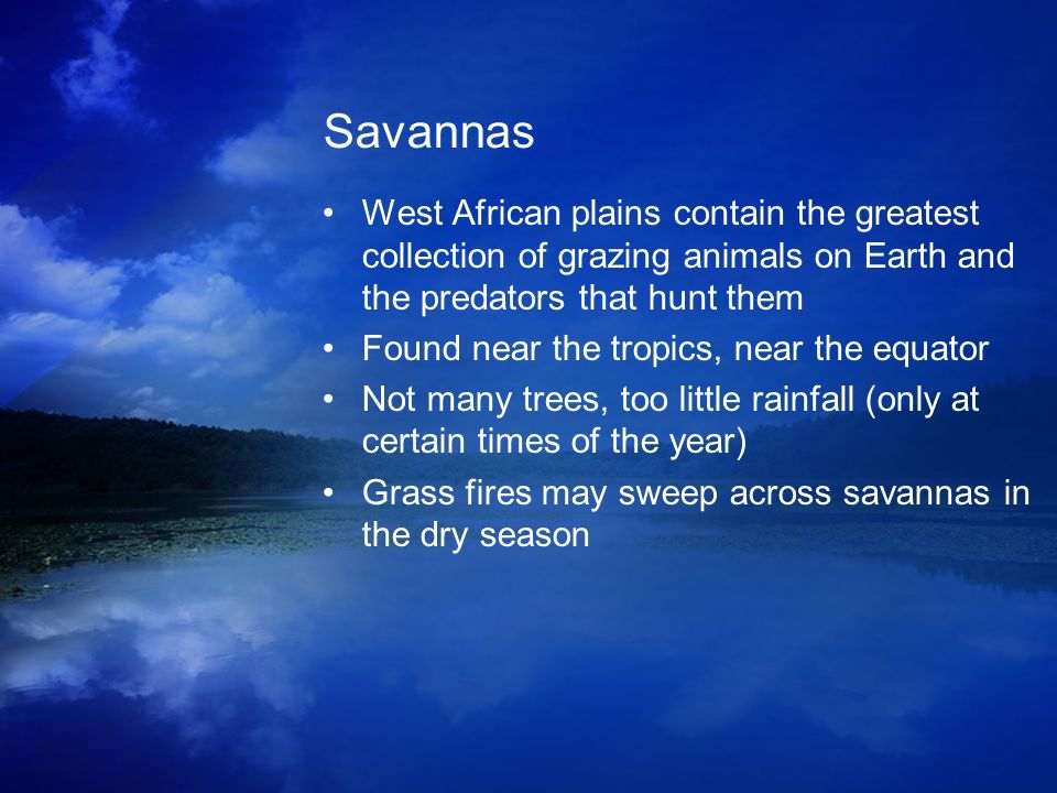 Savannas West African plains contain the greatest collection of grazing animals on Earth and the predators that hunt them.