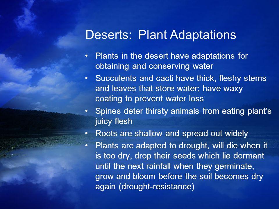 Deserts: Plant Adaptations