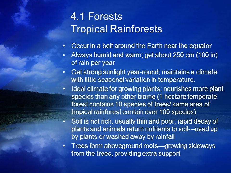 4.1 Forests Tropical Rainforests