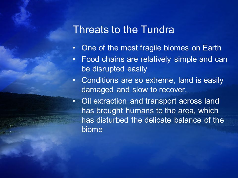 Threats to the Tundra One of the most fragile biomes on Earth