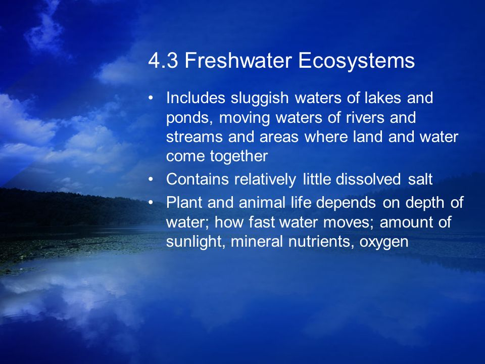4.3 Freshwater Ecosystems
