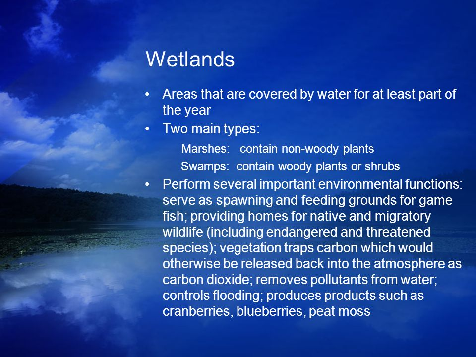Wetlands Areas that are covered by water for at least part of the year