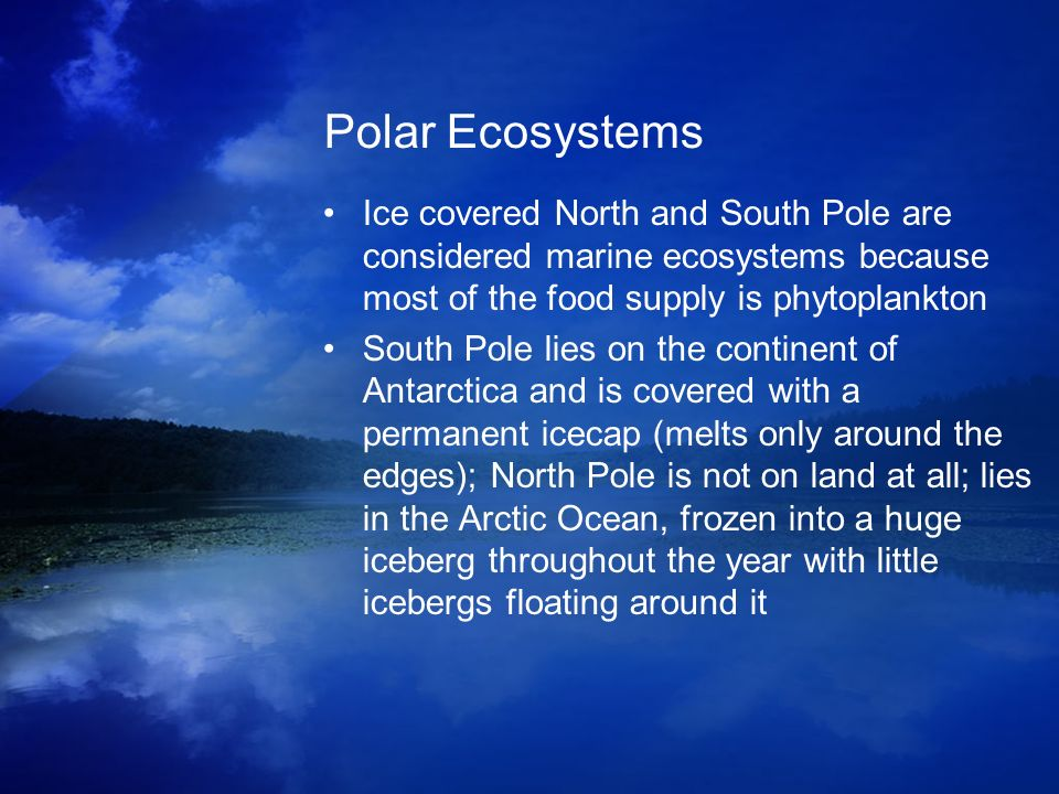 Polar Ecosystems Ice covered North and South Pole are considered marine ecosystems because most of the food supply is phytoplankton.